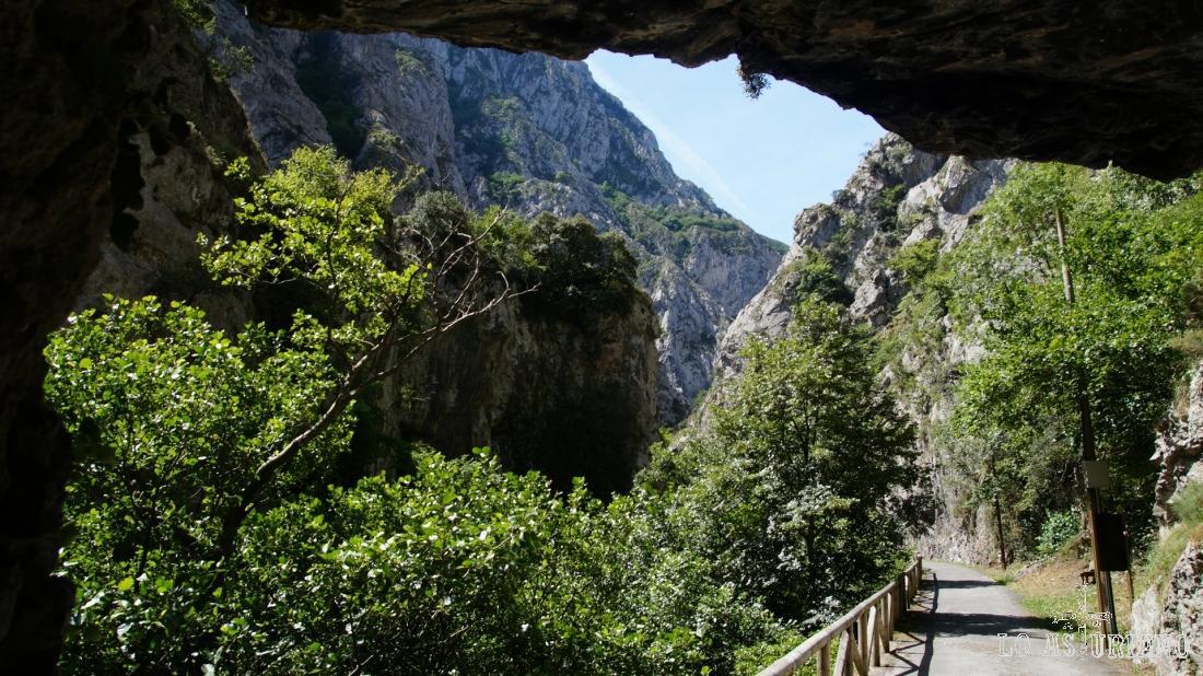 La senda del oso, en cuya cercanía de Entrago, a poco menos de 600 metros, está la zona de escalada.