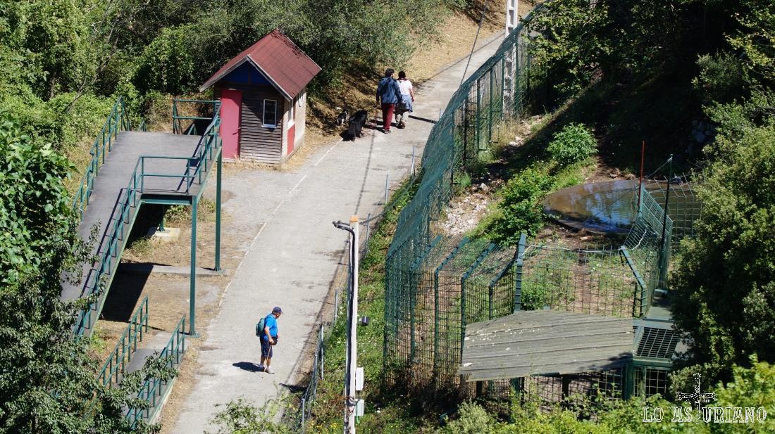 La senda del oso, justo en su paso por el cercado osero de Proaza.