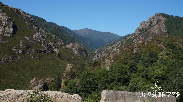 El boscoso valle del río Taja.