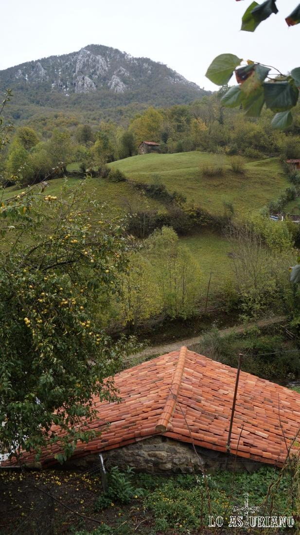 Cabaña cerca de Pendones, concejo de Caso.