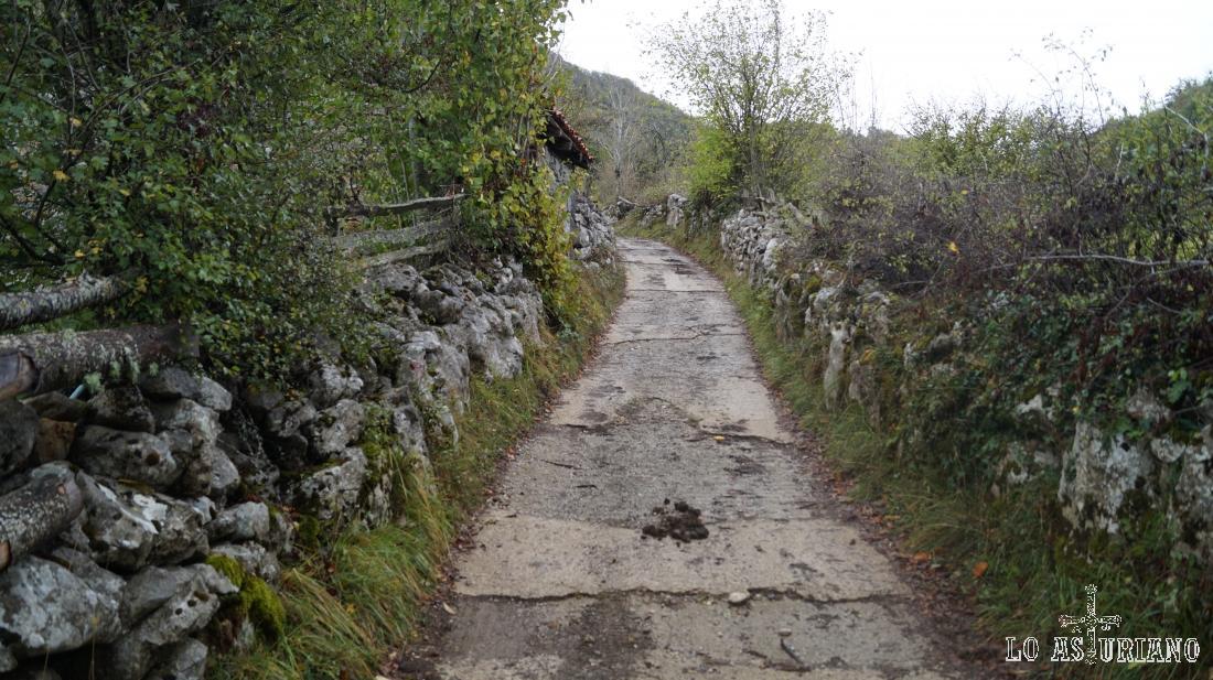 Camino a la Vega Baxu o Vega Baxio.
