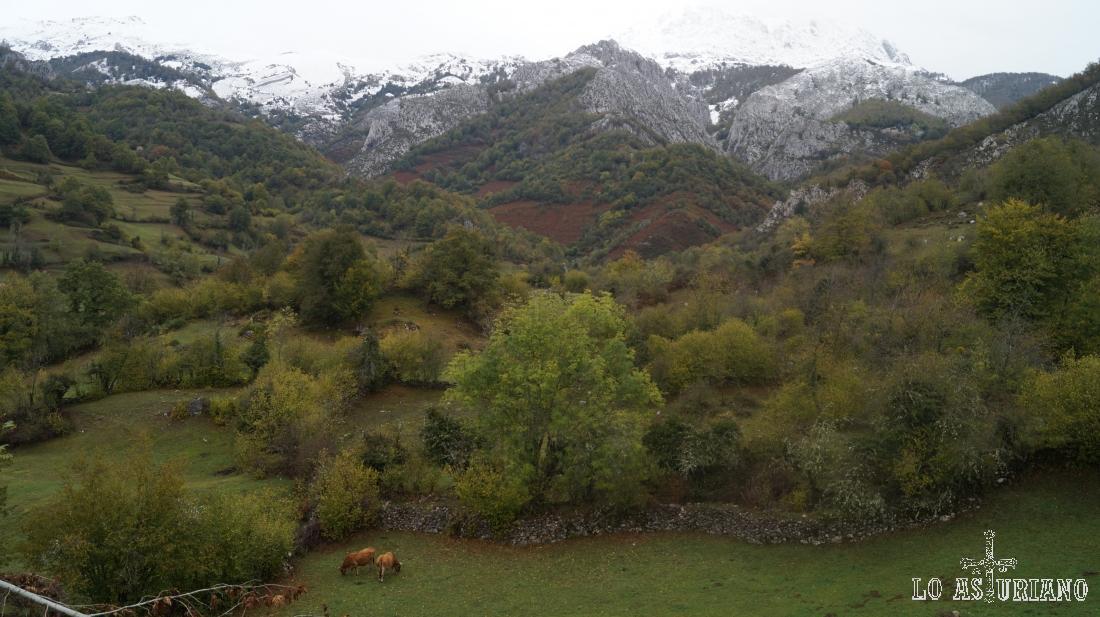 Praderías y paisajes pre-otoñales en el concejo de Caso.