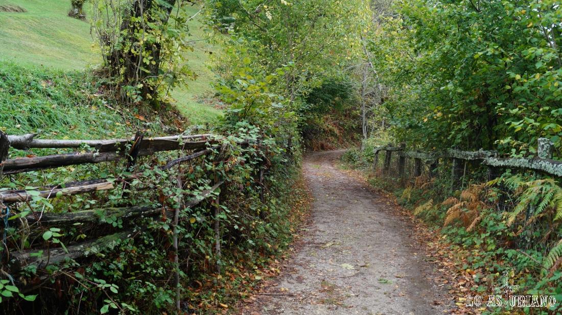 Vallas de madera a los 2 lados de la pista.