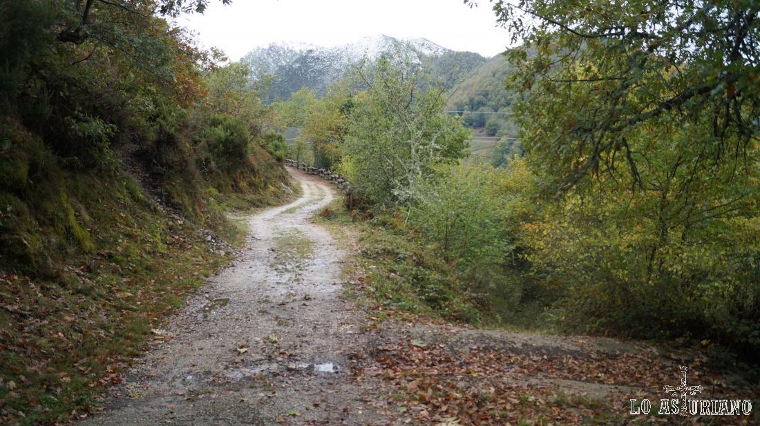 La subida a Vega Baxu tiene apenas 5-6 km de ida, con poca dificultad y máximo disfrute.