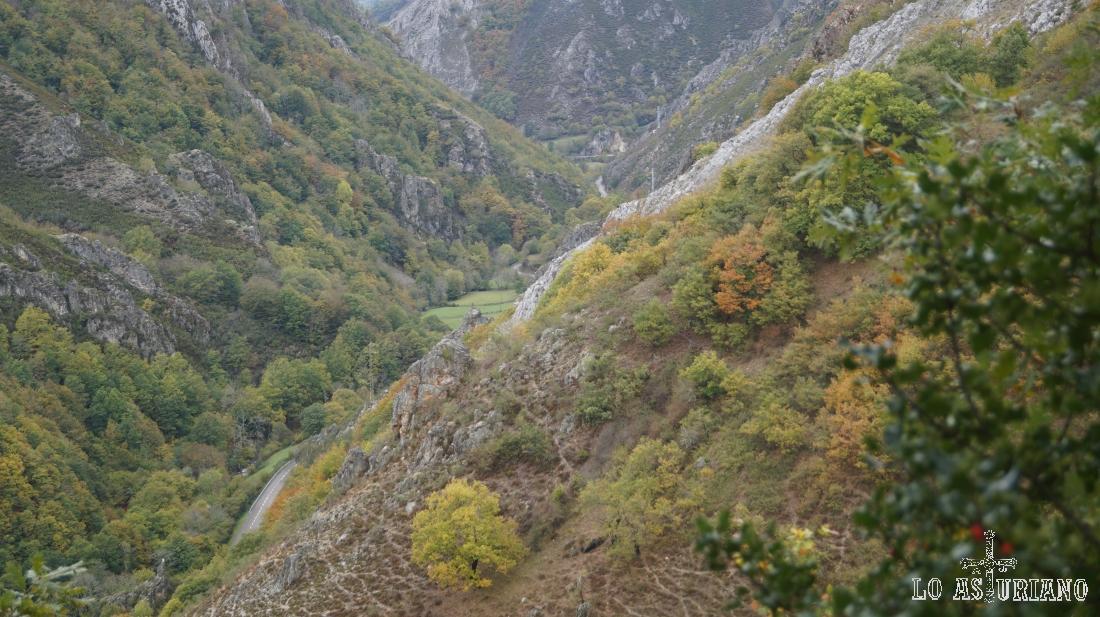 La carretera del puerto de Tarna, en el valle del Nalón.