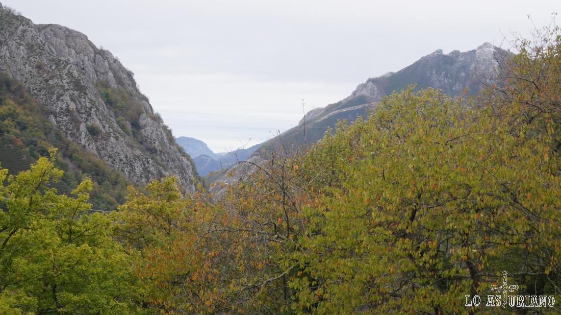El valle del río Nalón, en la parte más joven.