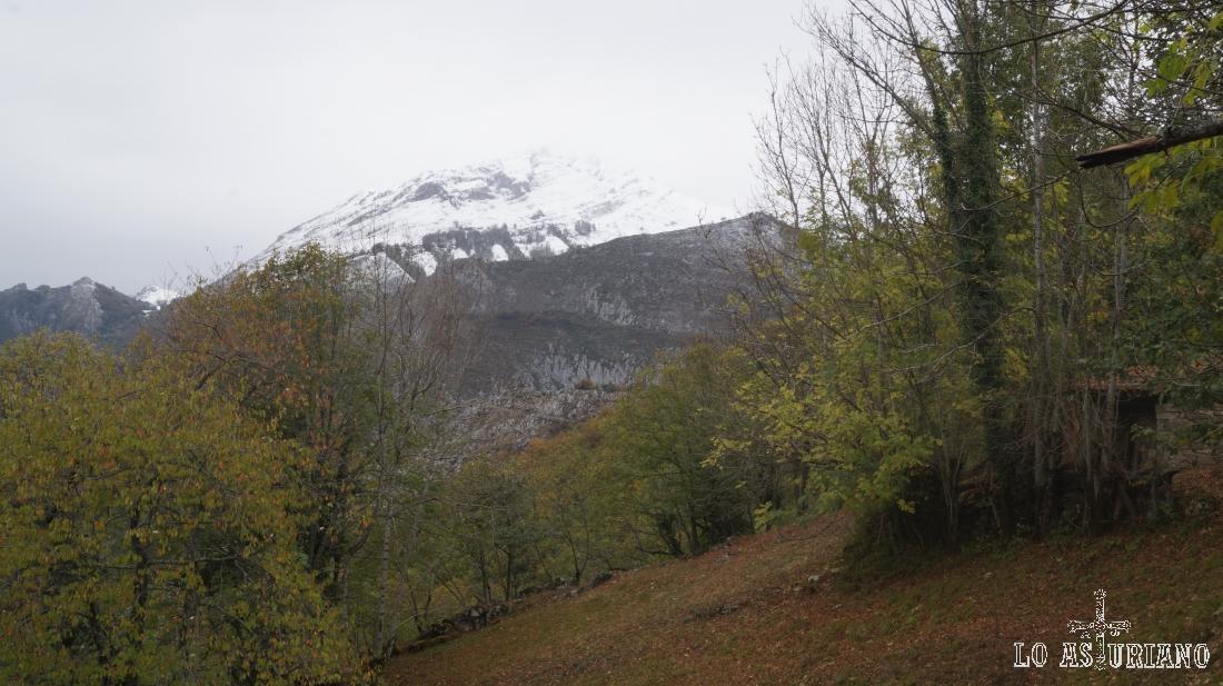 Pico la Senda, 1705 msnm.