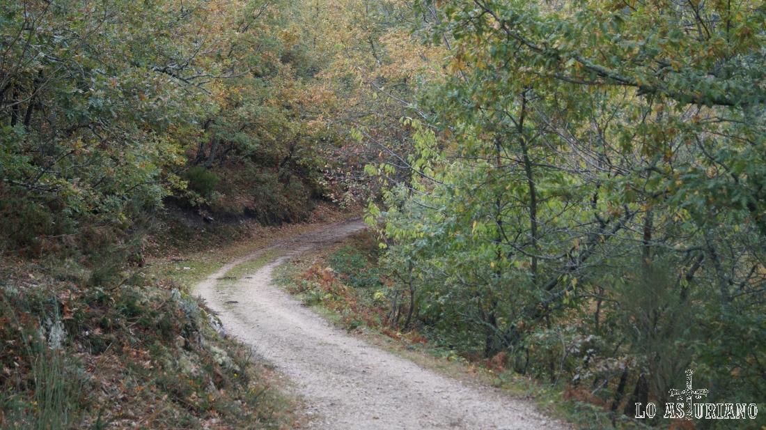 Llevamos unos 3 km desde que partimos de Pendones.