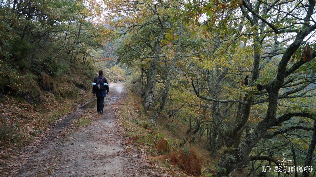 Ruta de senderismo Pendones-Vega Baxu.