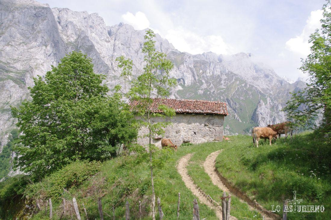 Valle de Angón