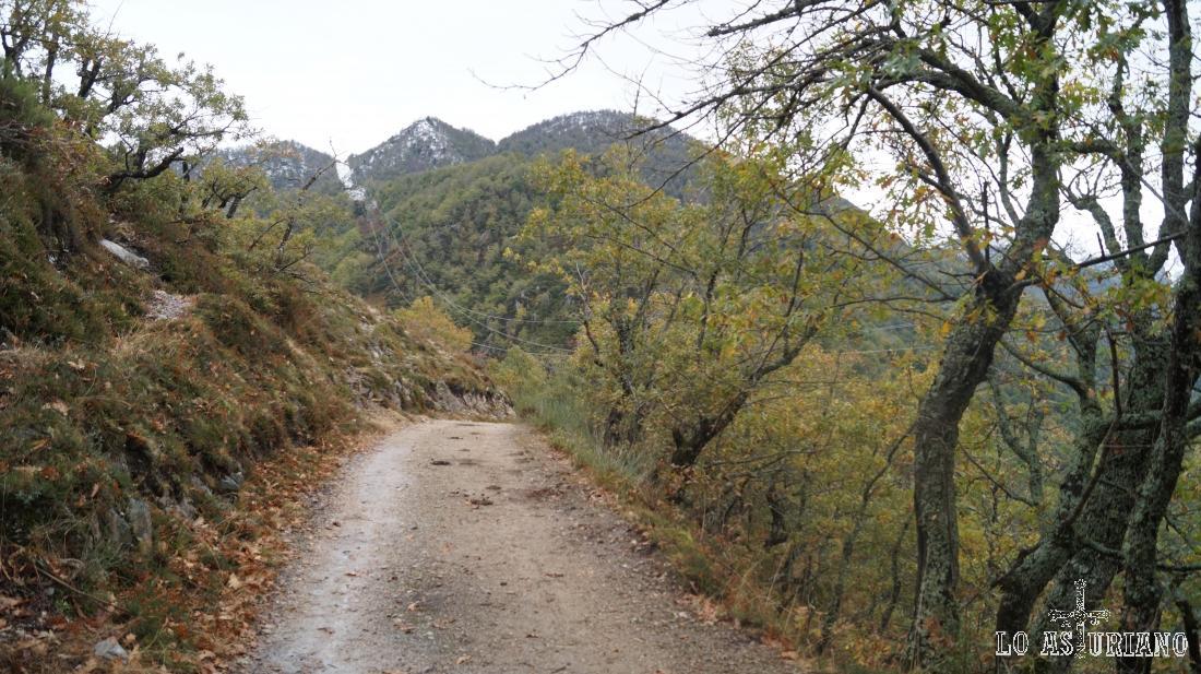 Paisajes pista Pendones - Vega Baxu.