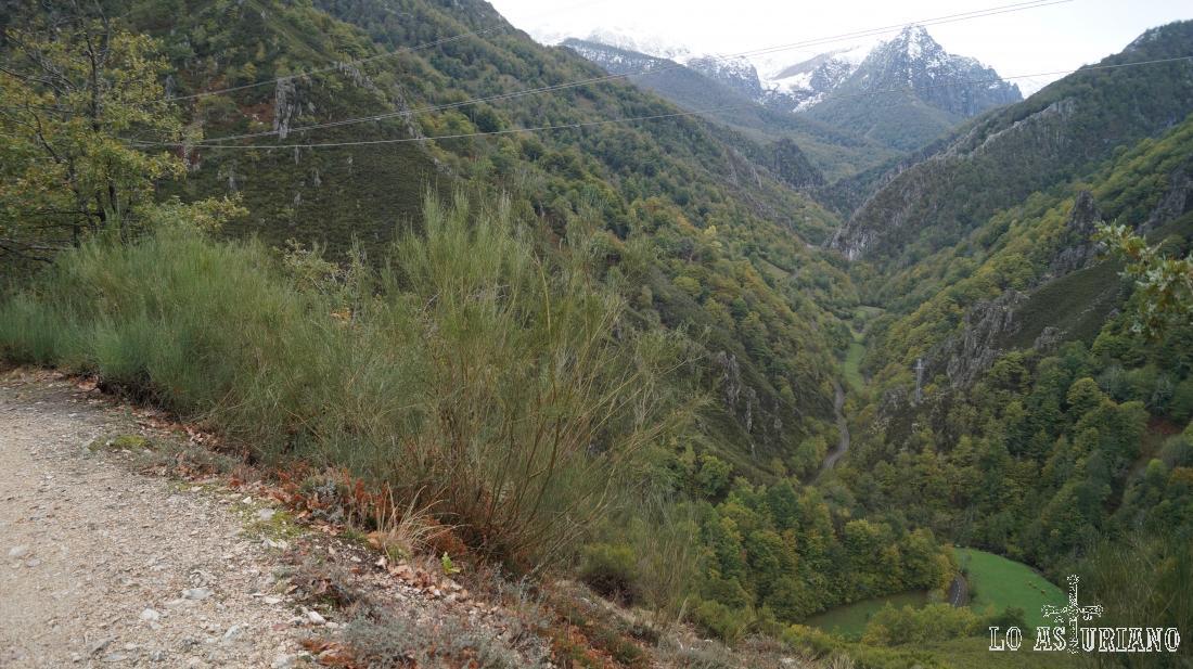 Al fondo, el Cuetu Negro y el valle del Nalón.