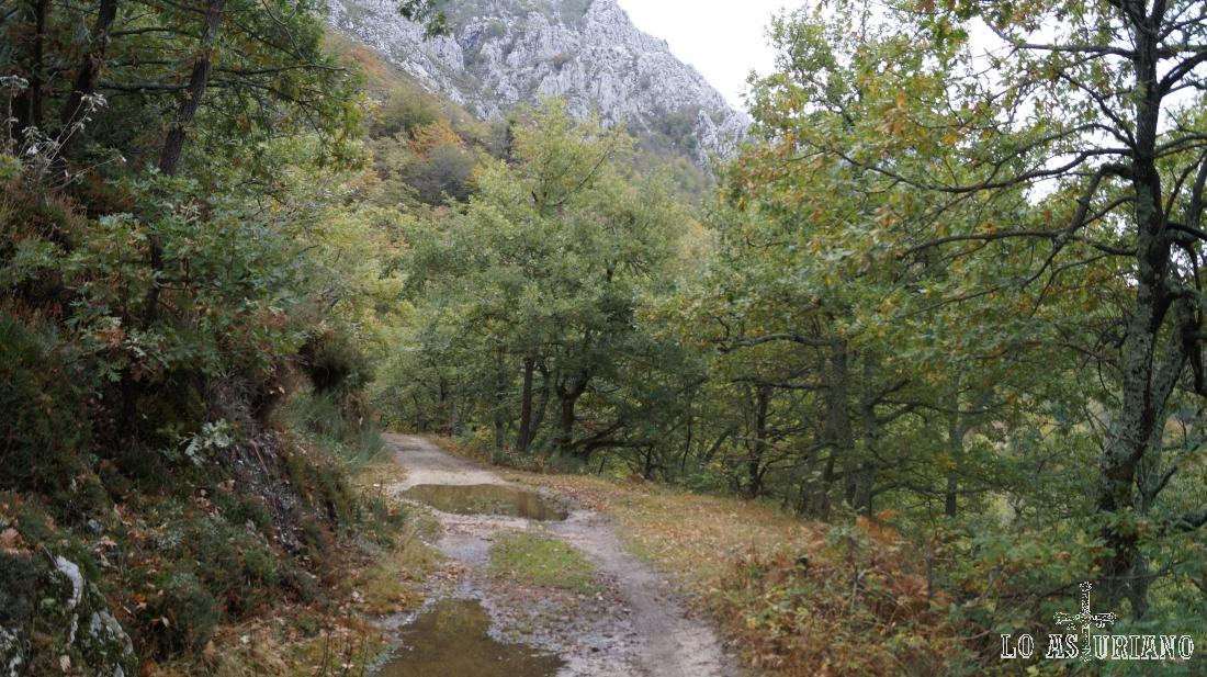 Estamos a unos 950 msnm, mientras que Vega Baxu está a 1110 msnm.
