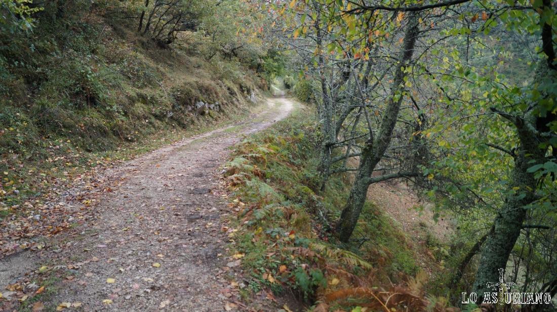 Idílico camino hacia Vega Baxu.