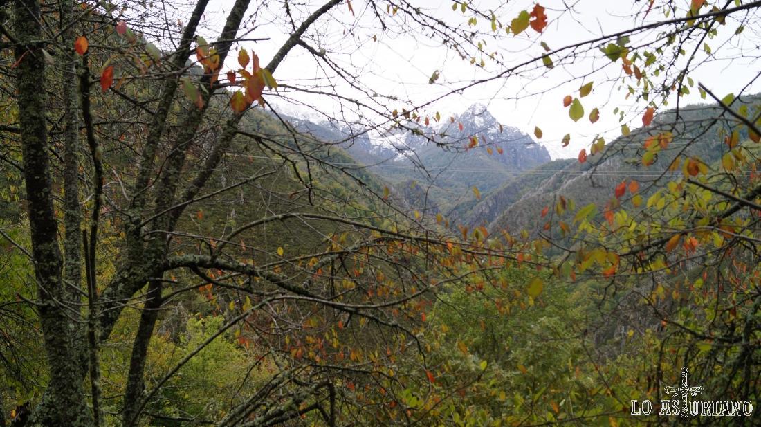 Cuetu Negro, 1582 m, preciosa cima rocosa el Parque Natural de Redes.