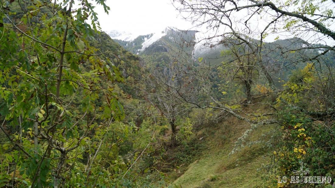 Los idílicos paisajes de la senda.