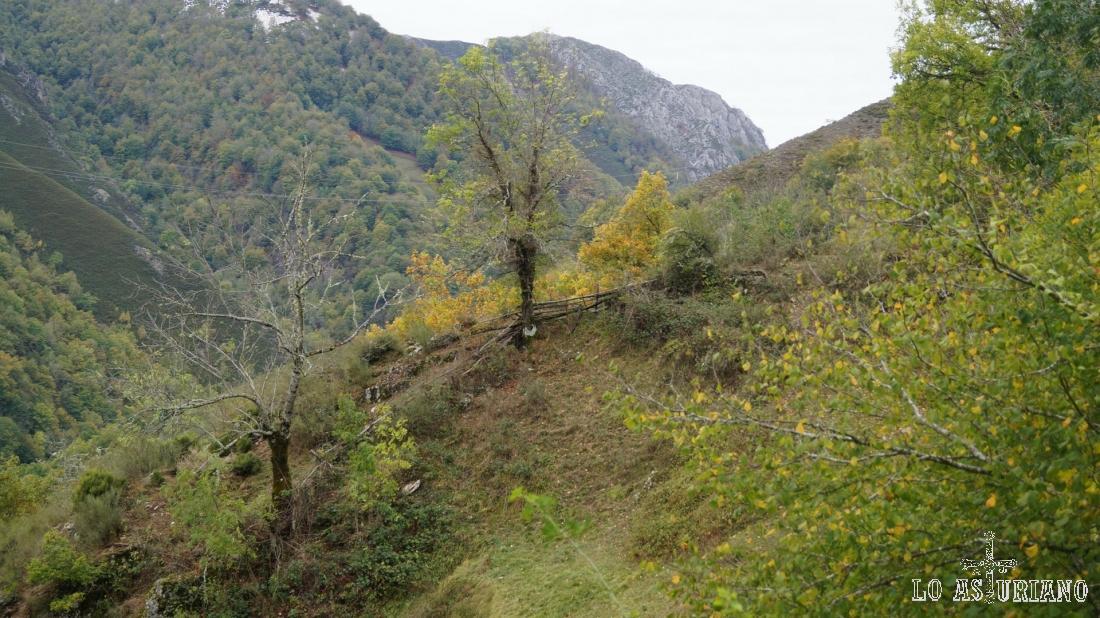 Pindias laderas y bosques, el paisaje habitual de Redes.