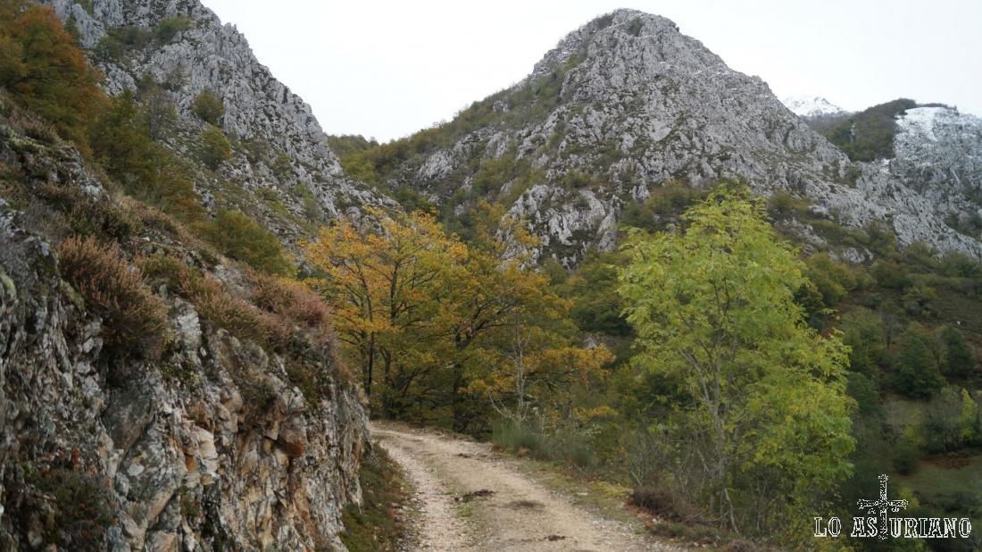 El Cerro la Roza, con 1393 msnm.