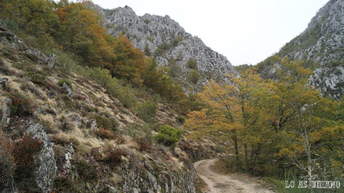 Enfrente, el pequeño valle entre el Cordal de Pendones y el Cerro la Roza.