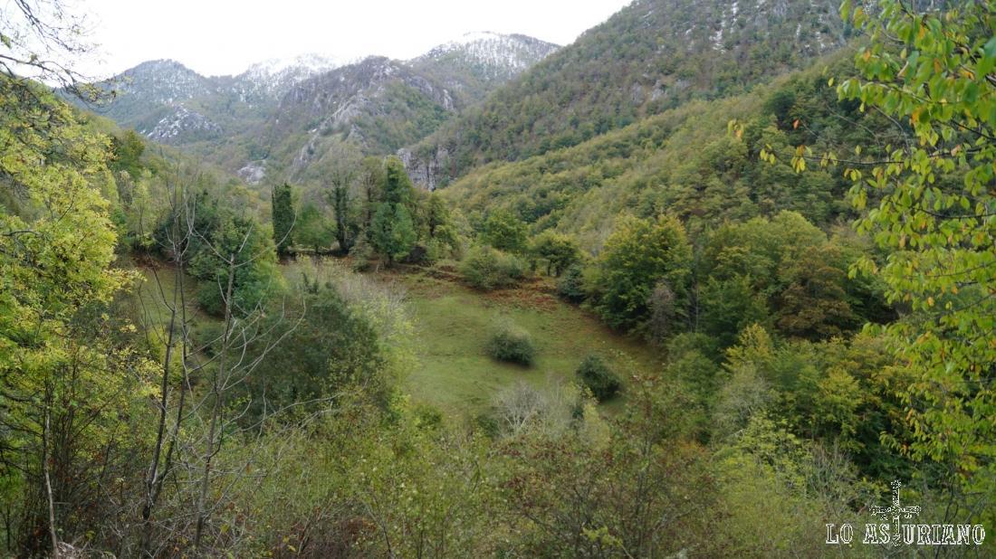 Los prados de la Texeira, en el Parque Natural de Redes, valle del arroyo de Corralín.