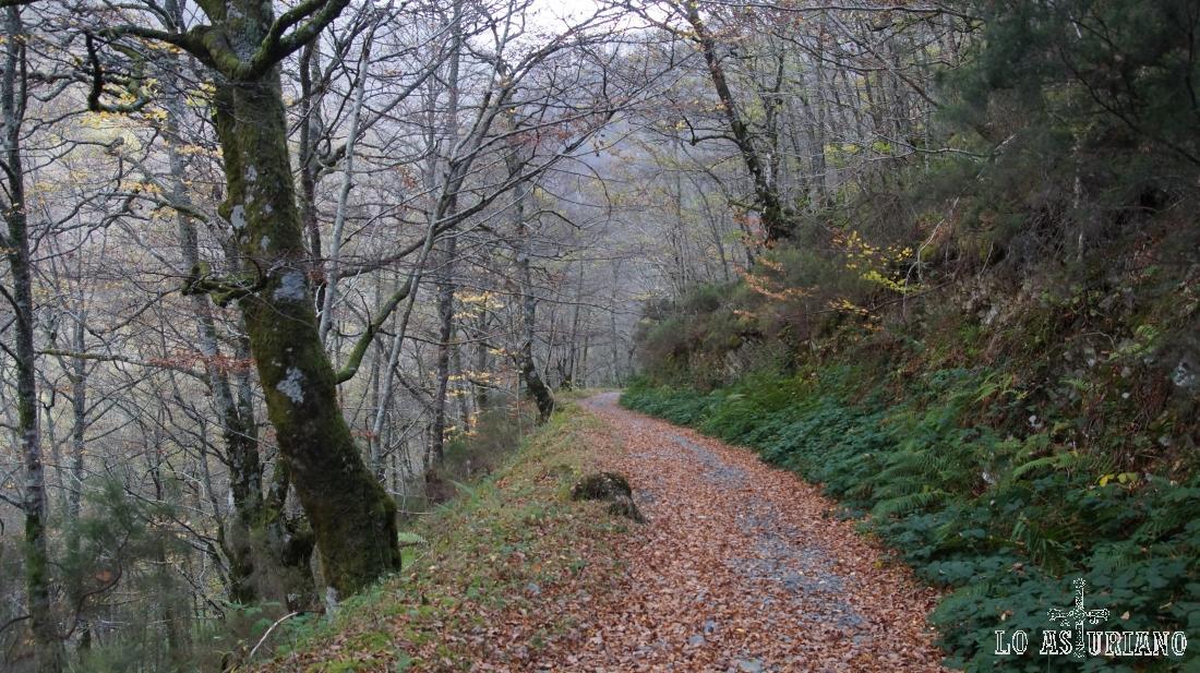 La pista sube hacia una antigua mina.