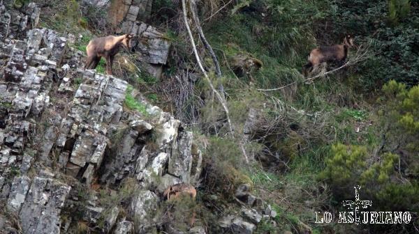 El grupo se mantiene en una zona visible, alta, y desde donde ven todo el valle.