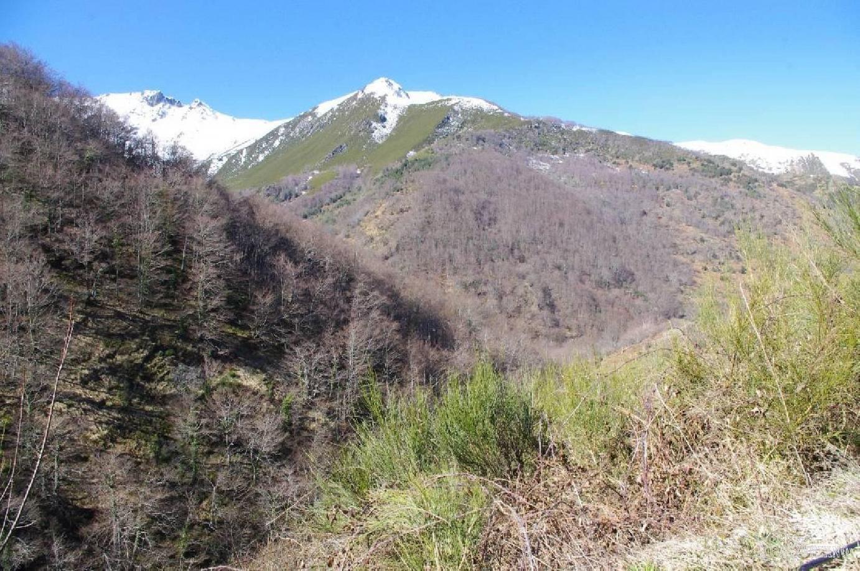 Primaveral día de invierno en el Valle de Pigüeña.