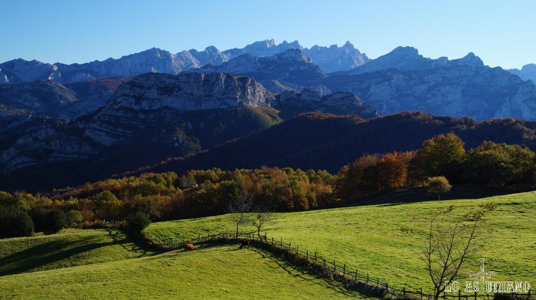Verdes prados y los Picos de Europa, desde el parking de Les Bedules.