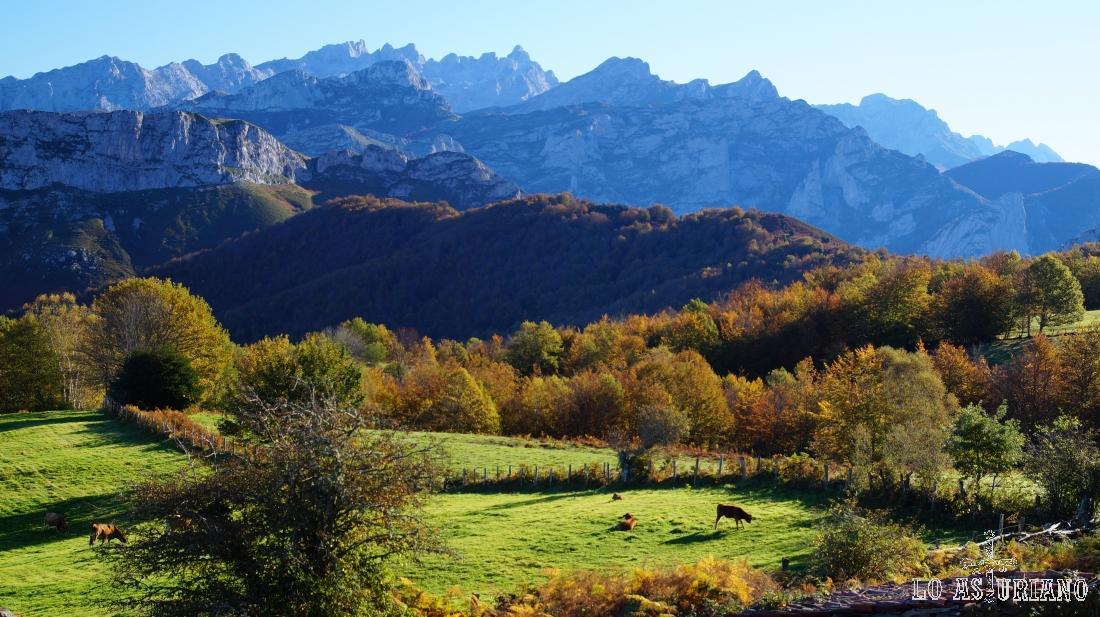 Los preciosos prados de Les Bedules, camino del bosque de Peloño.