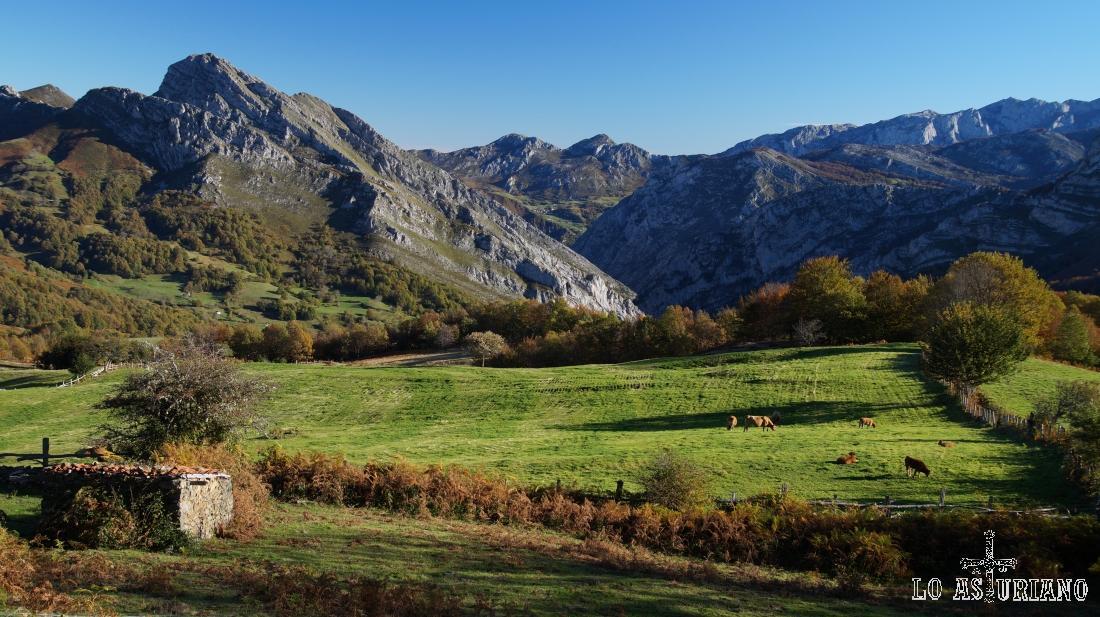 Praderías de les Bedules, concejo de Ponga, Asturias.