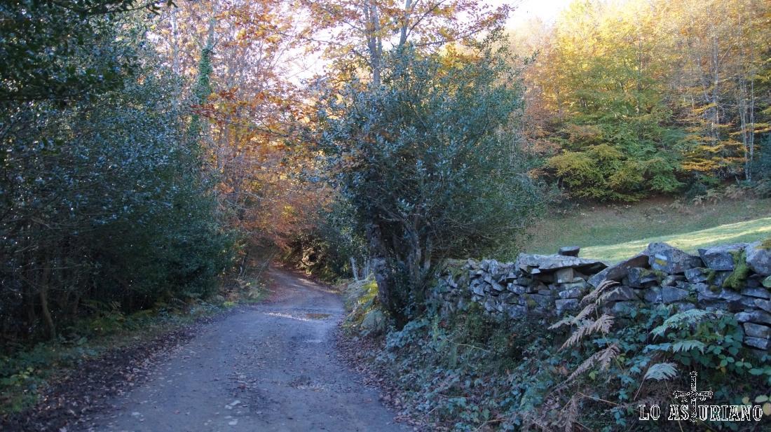 La pista de Peloño es sencilla, sin desniveles grandes.