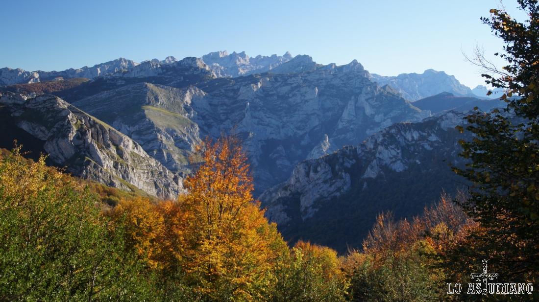 El Parque Nacional de los Picos de Europa, desde la pista del bosque de Peloño.
