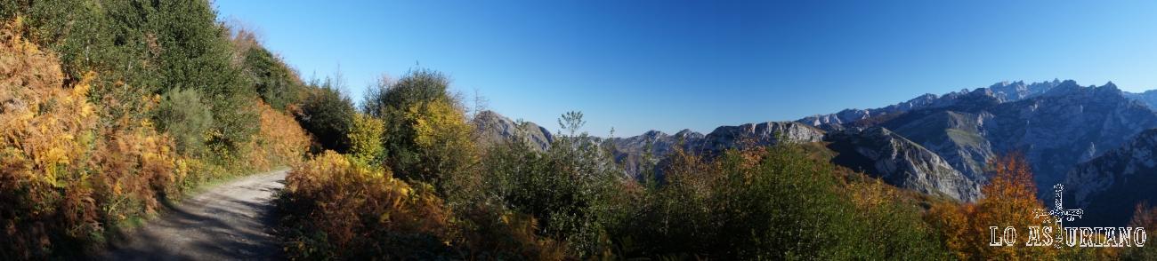 Panorámica desde la pista del bosque de Peloño, con los Picos de Europa al fondo.