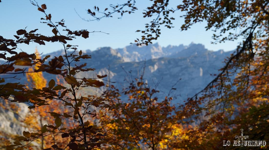 A veces se dejan ver los Picos de Europa.