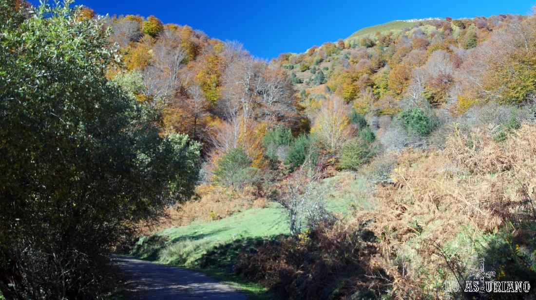 Paseo idílico por Peloño.