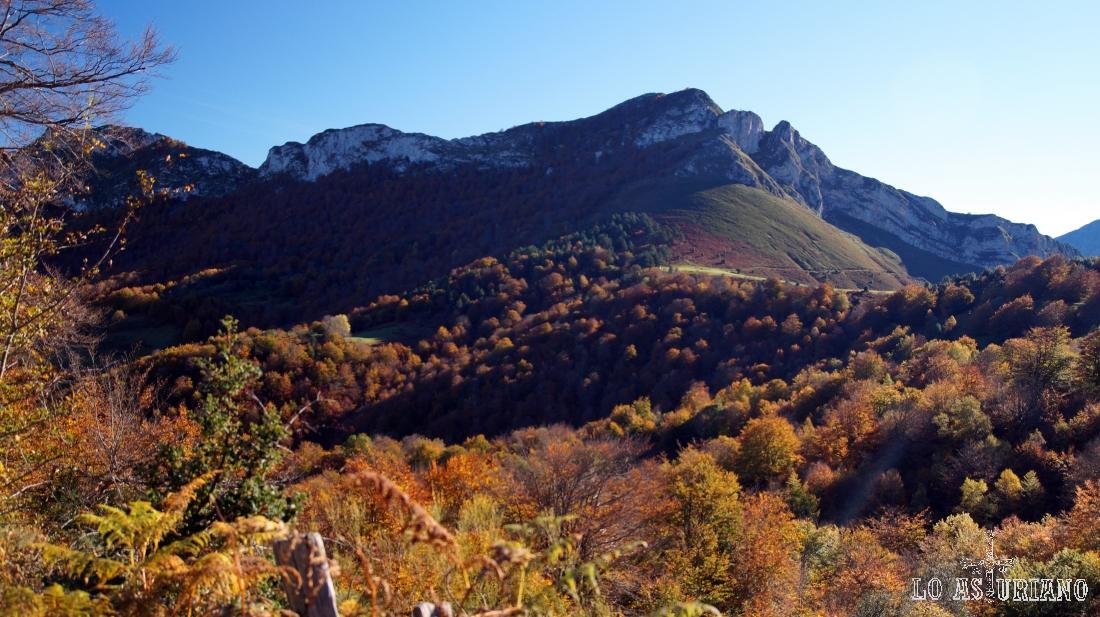 La collada Viances, y el Sen de los Mulos, en el entorno del bosque de Peloño.