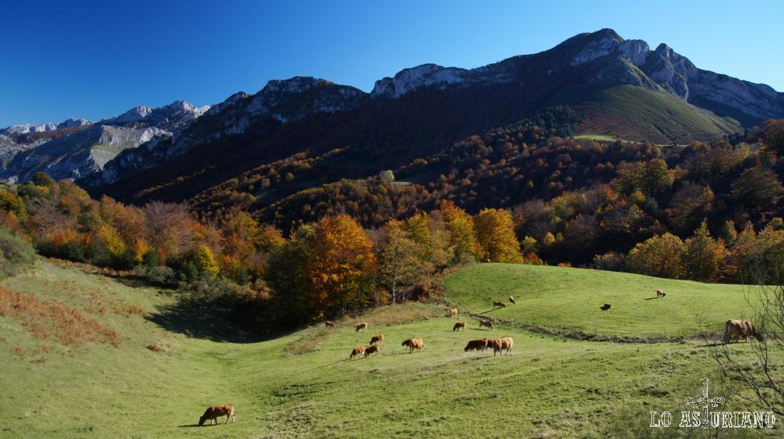 Magníficos paisajes del Parque Natural de Ponga, menos conocido pero no por eso, menos bello.