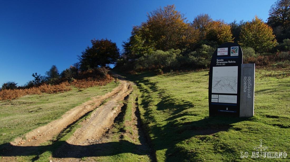 Collada Granceno, a 1194 m, donde salimos de la pista y tomamos esta desviación hacia la collada Viances.