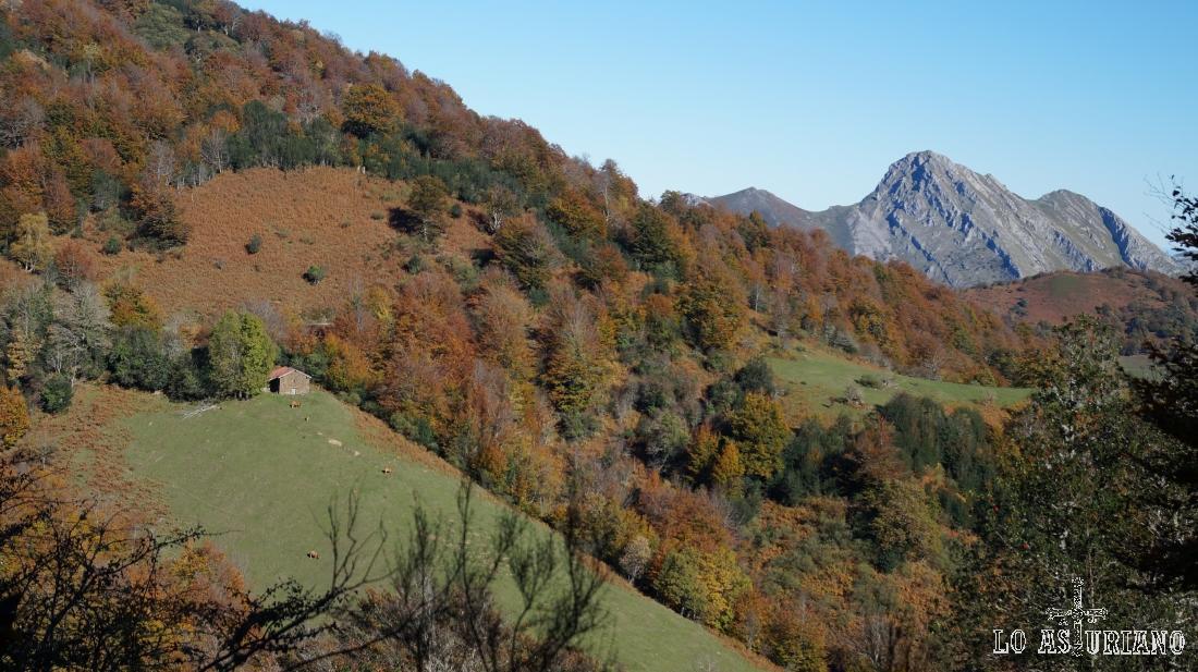 Prados y majadas, y al fondo, el pico Carriá.