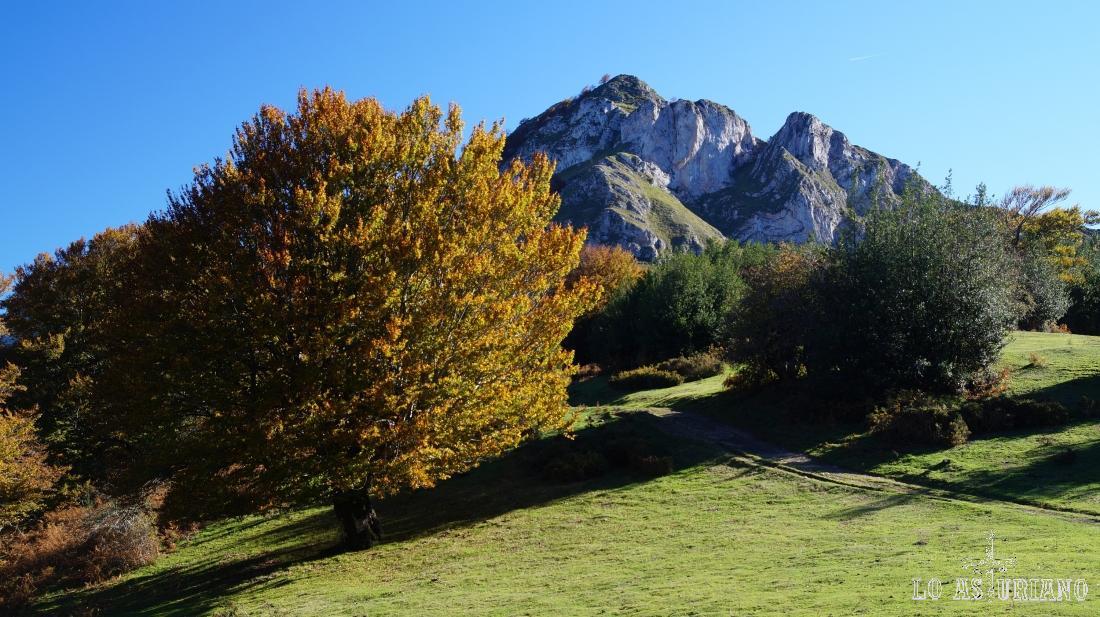 Más cerca ya de la base del Sen de los Mulos, paseando por el monte el Carrascal.
