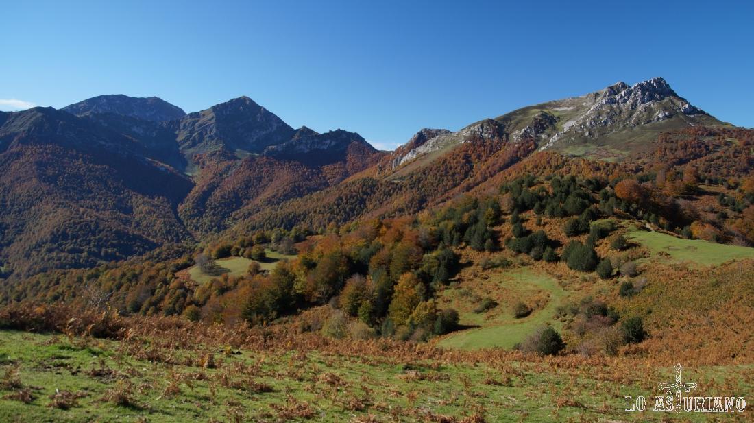 Contemplamos ya el bosque de Peloño en todo su esplendor, así como las preciosas cimas que le rodean.