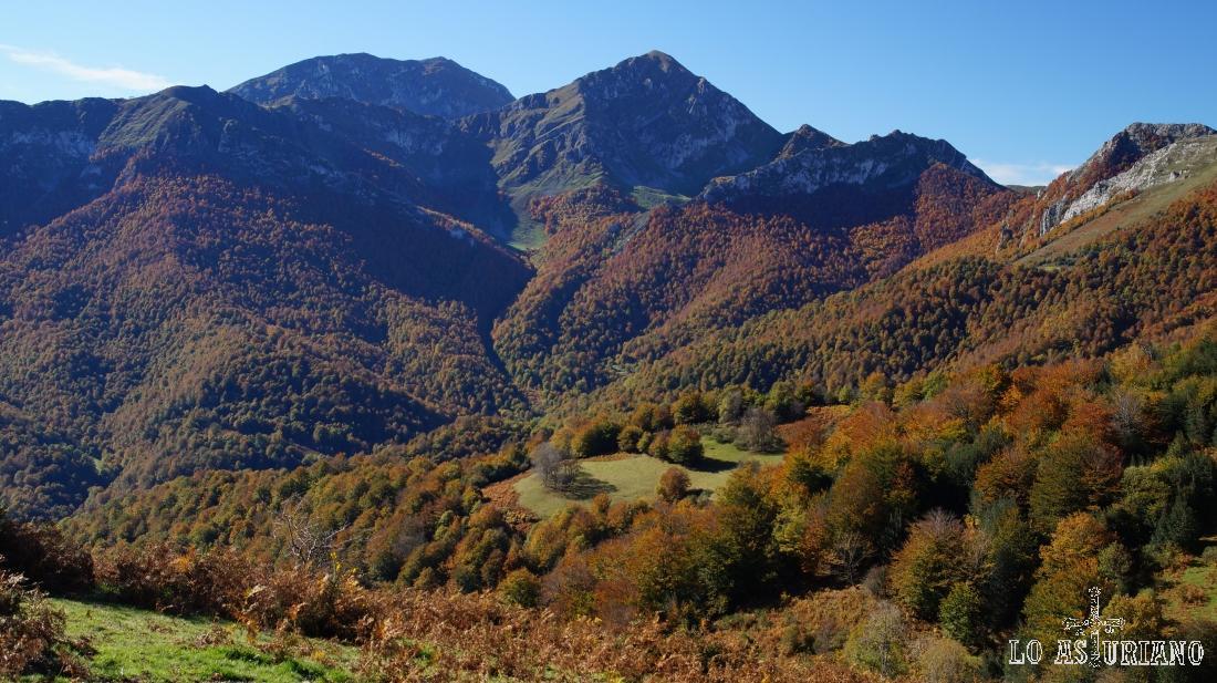 Ten y Pileñes, y el bosque de Peloño, la joya natural de Ponga.
