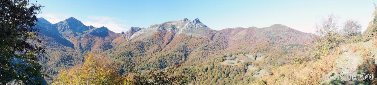 Panorámica del bosque de Peloño, en Ponga.