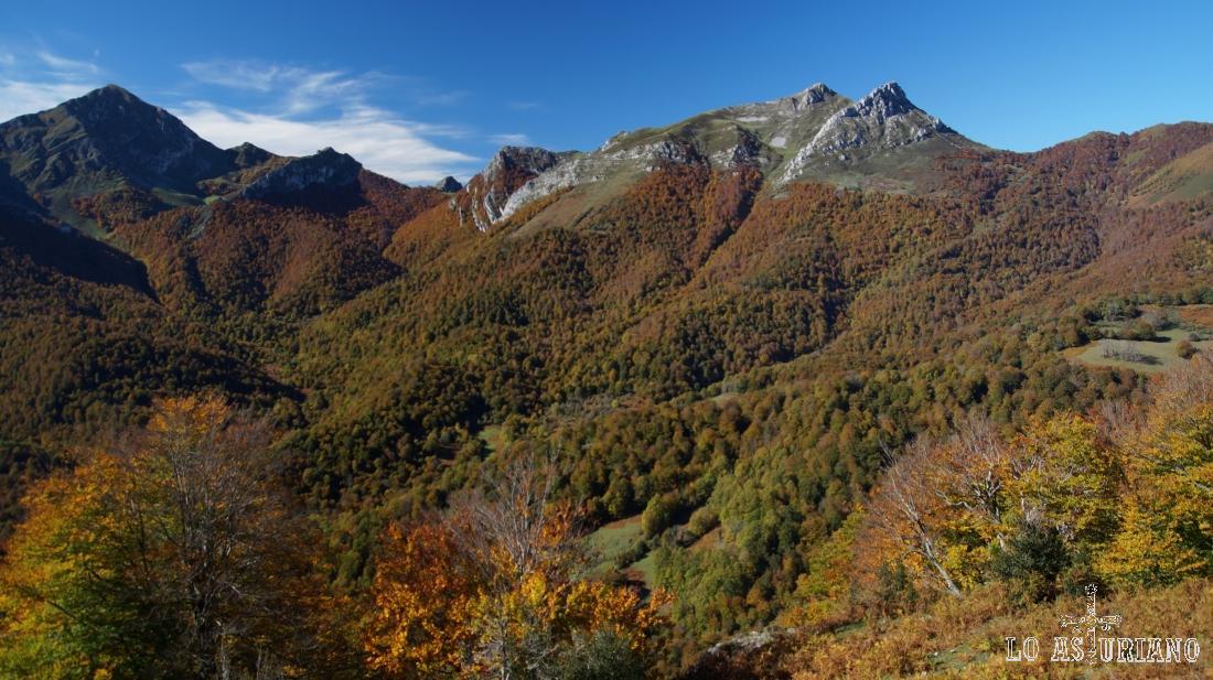 Los colores más rojizos del hayedo están en las partes más altas, que son más frías también..