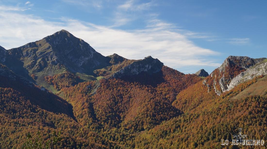 El magnífico bosque de Peloño, Ponga, en pleno otoño.