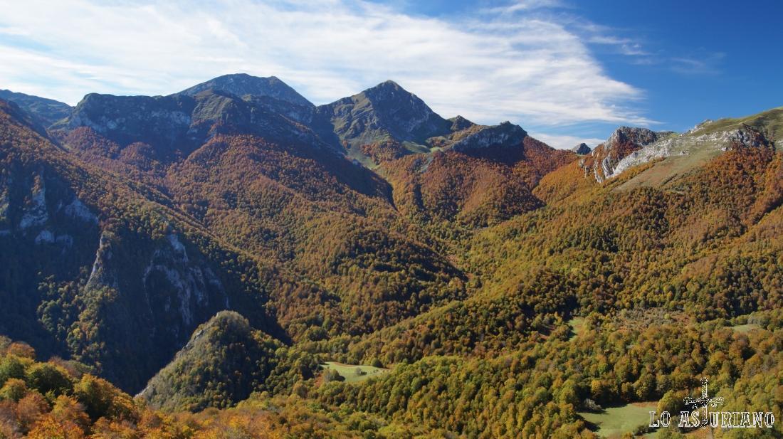 Para ver en todo su esplendor el bosque de Peloño, te recomendamos esta ruta al Sen de los Mulos.