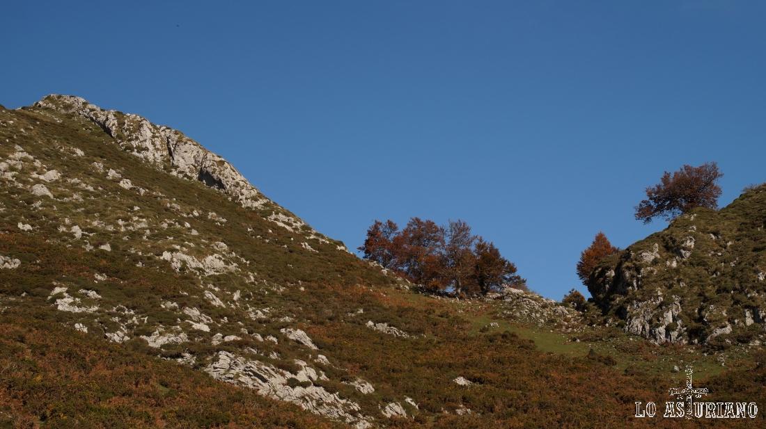 No hay un camino estándard a la cima, pero como ves, no tiene dificultad alguna.