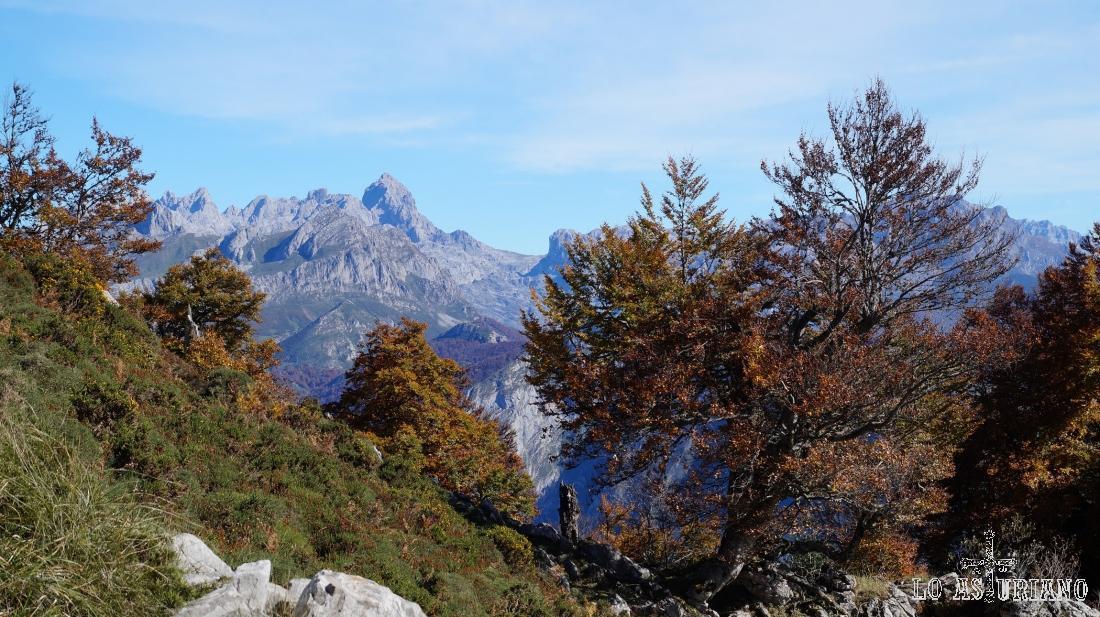 Que vistas más magníficas del macizo occidental de los Picos de Europa.