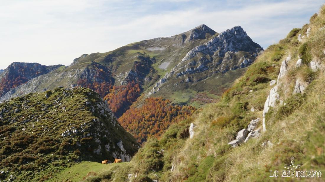 Magníficas vistas del rojizo Peloño y de las cimas del Luengu y Zorru, respectivamente. Fíjate en la colladita con las 2 vaquitas.