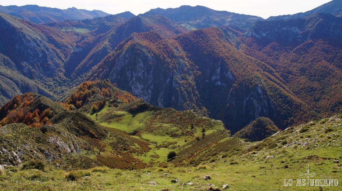 Magníficas vistas hacia la provincia de León, que comienza justo detrás de la zona boscosa.